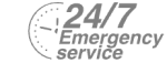 24/7 Emergency Service Pest Control in East Finchley, N2. Call Now! 020 8166 9746