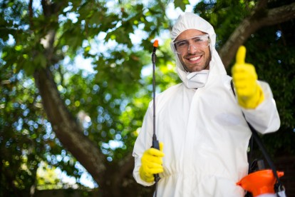 Pest Control in East Finchley, N2. Call Now 020 8166 9746